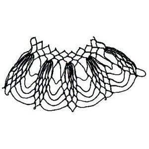 edge of netting named Acorn