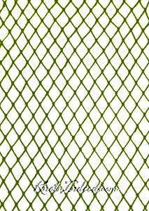 sample of plain diamond mesh netting