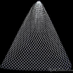 caul-triangle