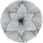 netting sample named fractal center
