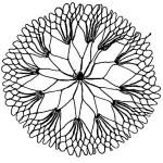 netting sample named web center