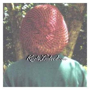 a net snood or hairnet