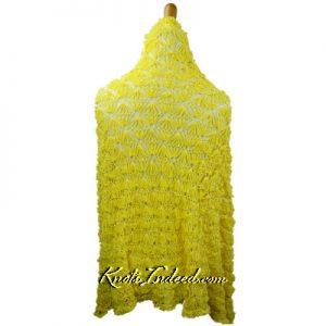 a net shawl