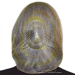 Hairnet: Innovation