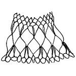 edge of netting named Beet