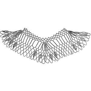 edge of netting named Peacock
