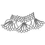 edge of netting named Scallops