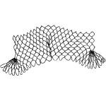 edge of netting named Seashell
