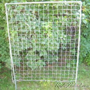 4 foot by 5 foot net trellis with 3 inch square meshes