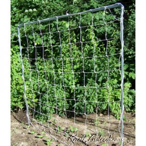 5 foot by 5 foot net trellis with 6-inch square meshes